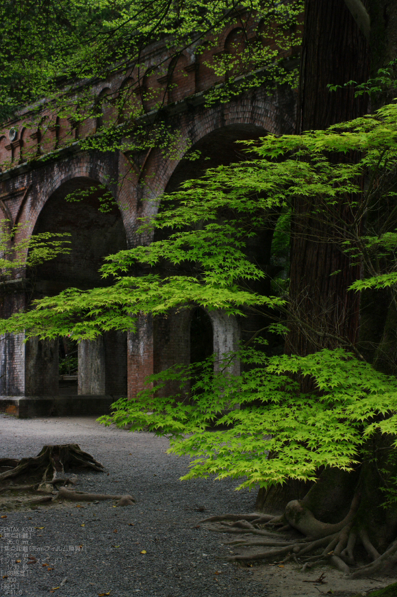 2011_5_南禅寺・新緑_21.jpg