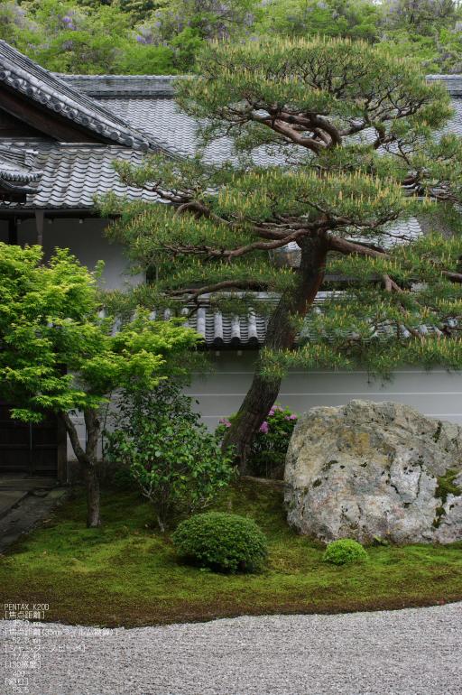 2011_5_南禅寺・新緑_33.jpg