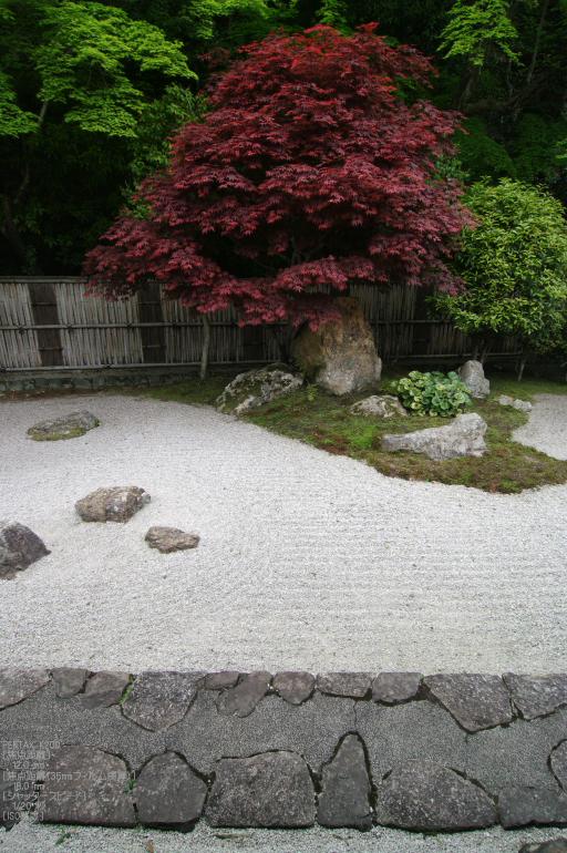 2011_5_南禅寺・新緑_35.jpg