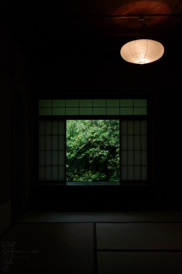 2011_5_瑠璃光院・新緑_23.jpg