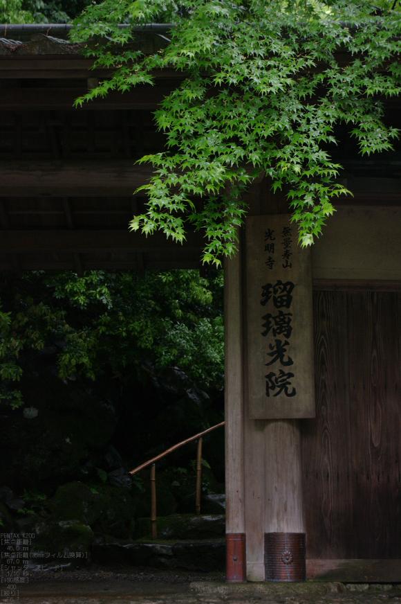 2011_5_瑠璃光院・新緑_29.jpg