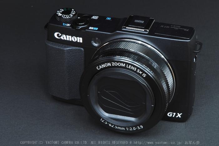 Canon,G1X_II(DSC_0010)2014yaotomi_.jpg
