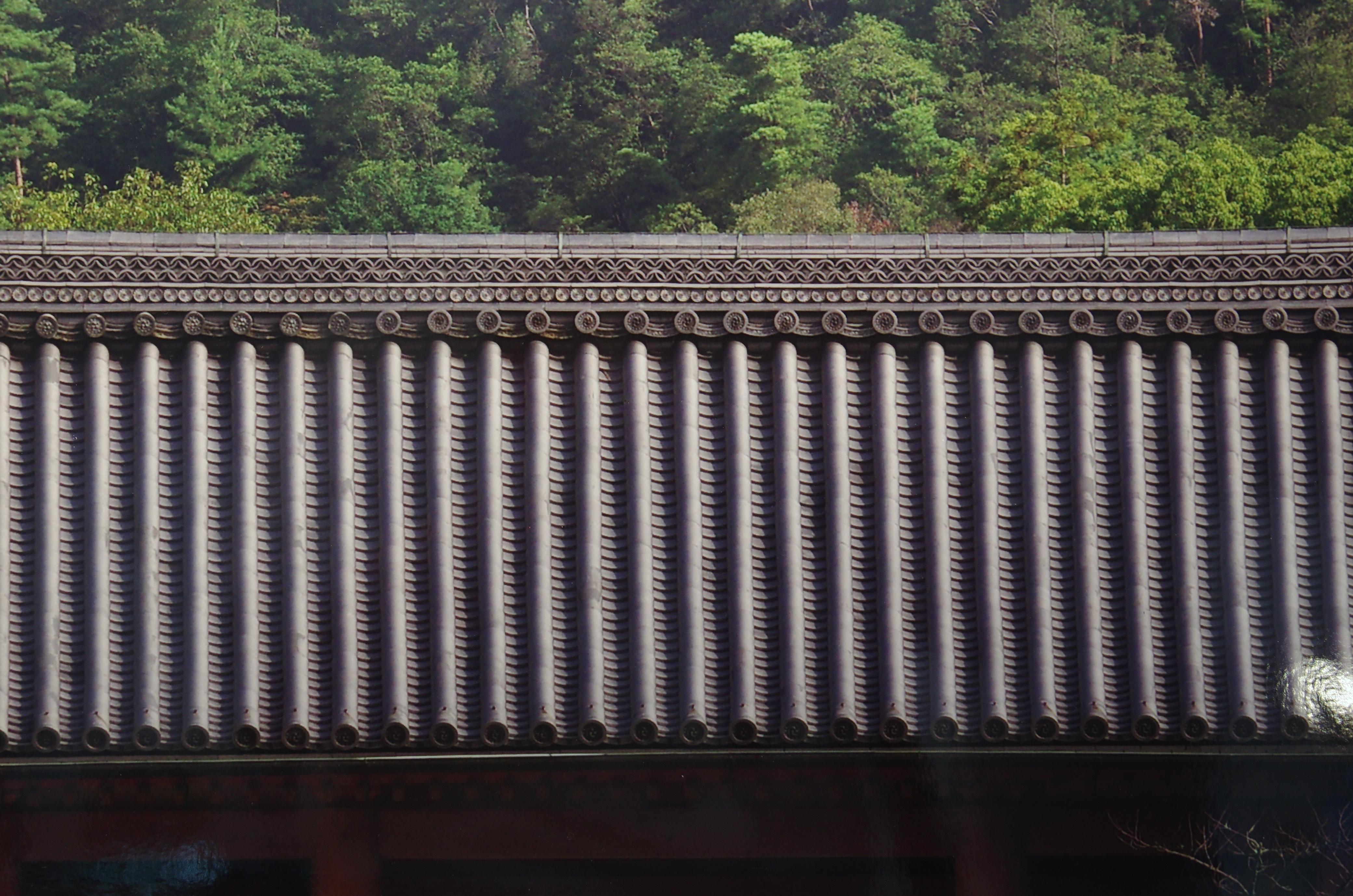 http://www.yaotomi.co.jp/blog/walk/K-5IIs_%E3%83%AD%E3%83%BC%E3%83%91%E3%82%B9%E3%81%AA%E3%81%97_yaotomi.jpg