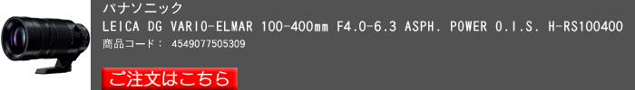 LEICA-DG-VARIO-ELMAR-100-400mm.jpg
