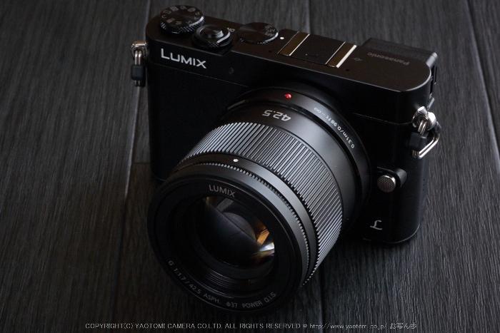 LUMIX,G,macro30(PEM10087,50 mm,F18)2015yaotomi.jpg
