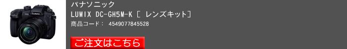 Lumix,GH5(レンズキット)_2017yaotomi.jpg