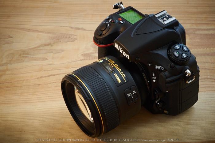 Nikon,D810(ED85mm)2014yaotomi_.jpg