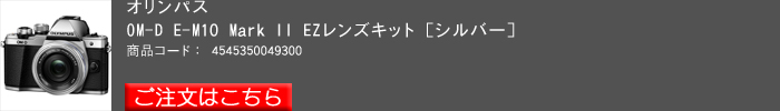 OLYMPUS,OM-D,E-M10II_2015yaotomi_1.jpg