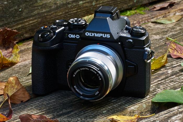 OLYMPUS,OMD,EM1_2014yaotomi_45mm.jpg