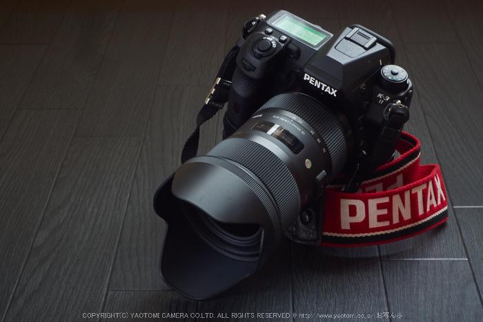 PENTAX,K-3II_2015yaotomi_12.jpg