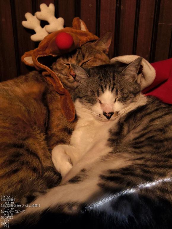PENTAX_Q_月クリスマス_2.jpg