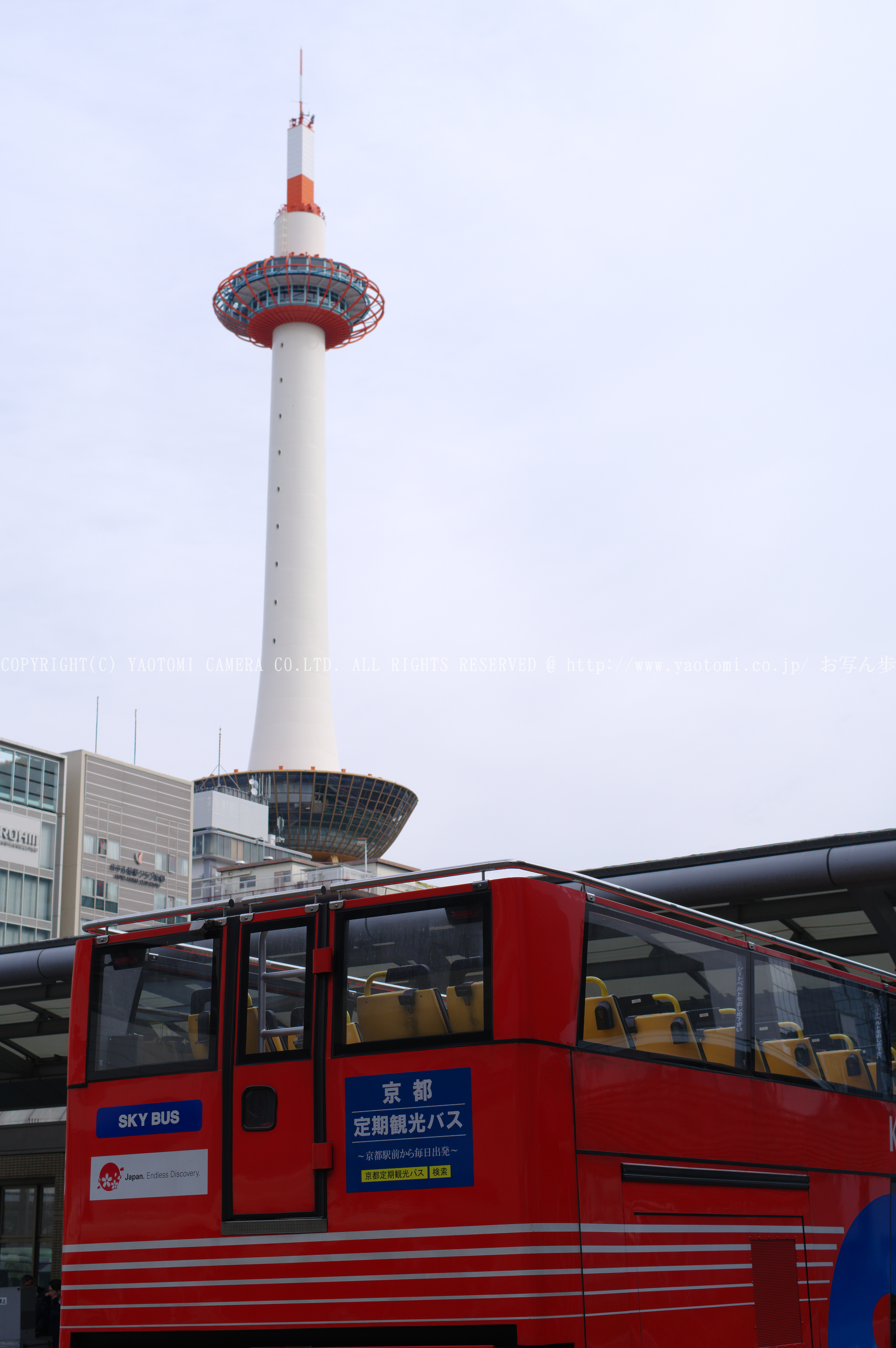 http://www.yaotomi.co.jp/blog/walk/PKP_1653.jpg