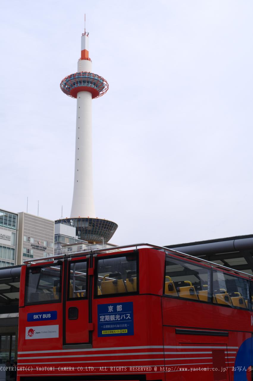 http://www.yaotomi.co.jp/blog/walk/PKP_1653sss.jpg