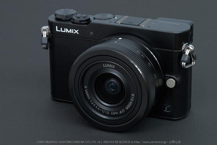 Panasonic,Lumix,DMC_GM5,2014yaotomi.jpg