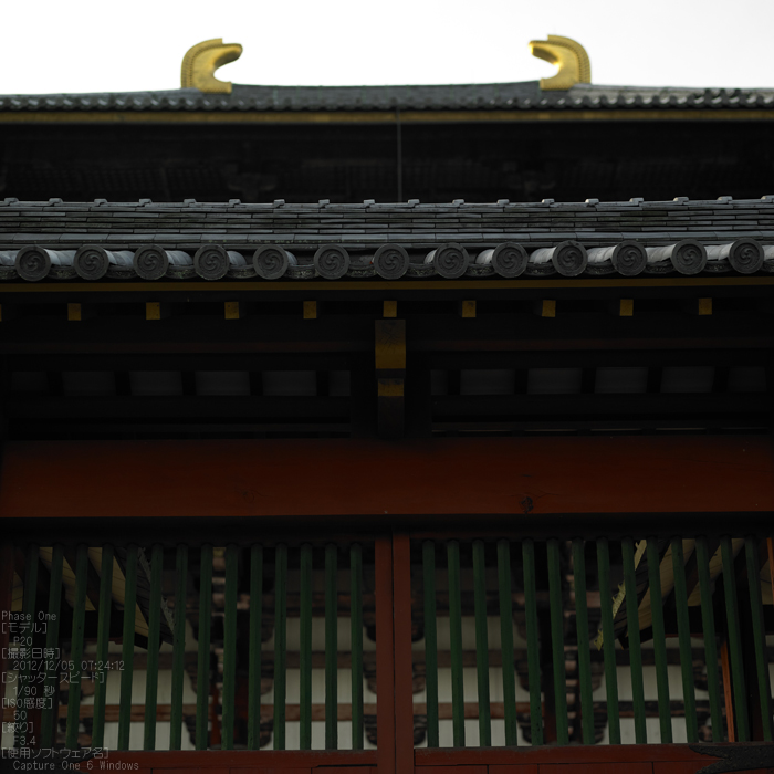 PhaseOne_P20_奈良東大寺_201212yaotomi_15s.jpg