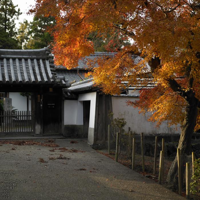 PhaseOne_P20_奈良東大寺_201212yaotomi_26s.jpg