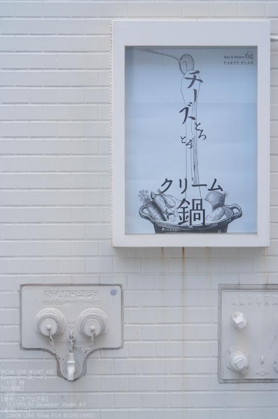 RICHO_GXR_A12__神戸_201301yaotomi_16.jpg