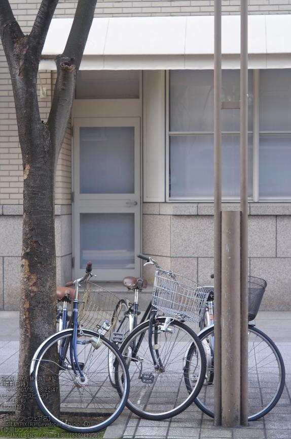 RICHO_GXR_A12__神戸_201301yaotomi_17.jpg