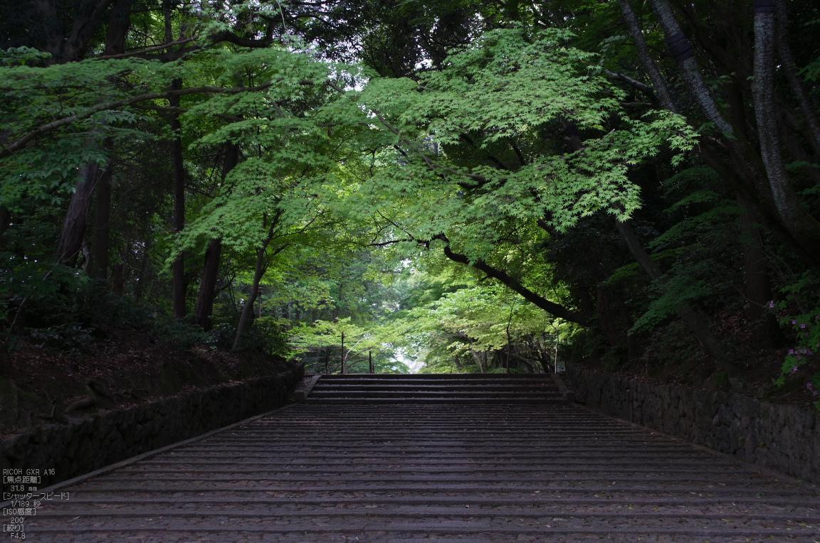 http://www.yaotomi.co.jp/blog/walk/RICOH_GXR_A16_%E5%85%89%E6%98%8E%E5%AF%BA%E3%83%BB%E6%96%B0%E7%B7%91_2012_yaotomi_2.jpg