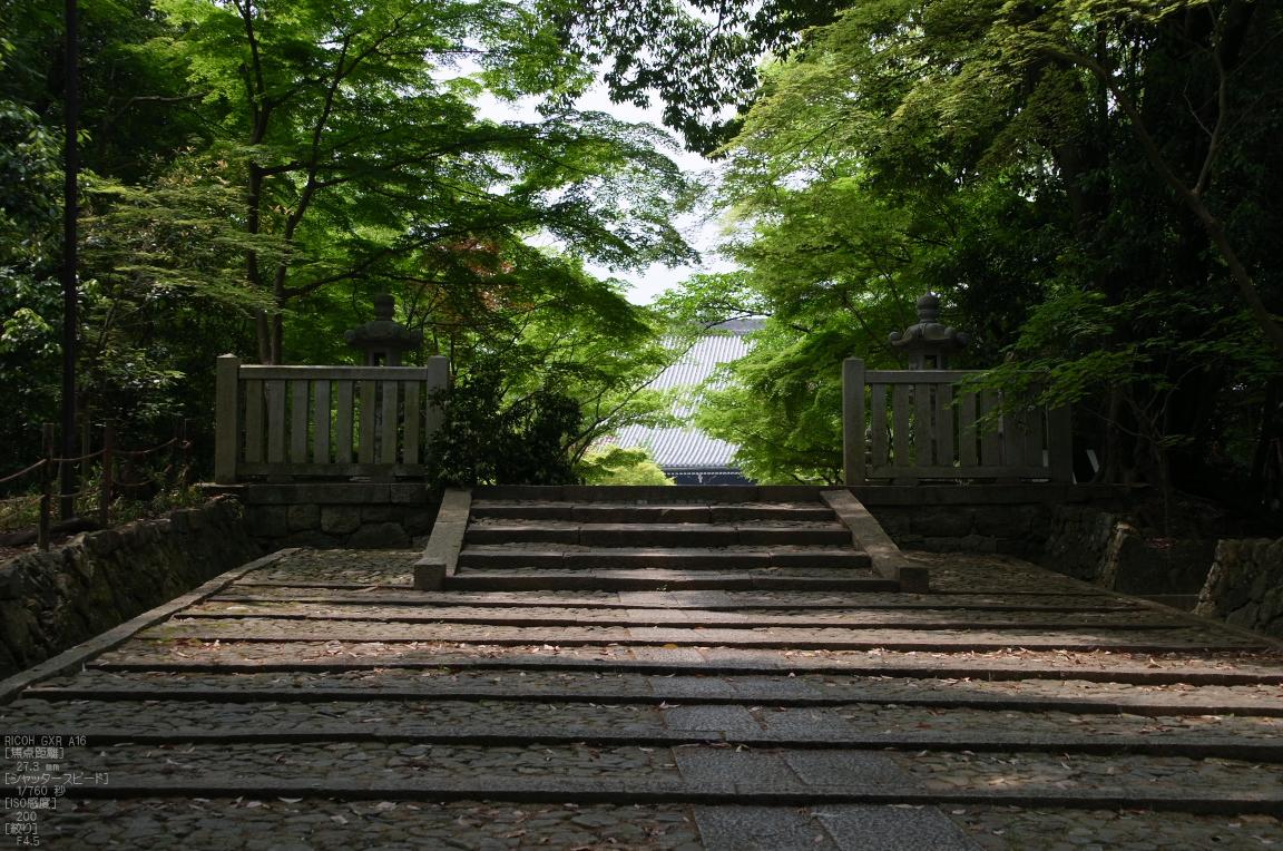 http://www.yaotomi.co.jp/blog/walk/RICOH_GXR_A16_%E5%85%89%E6%98%8E%E5%AF%BA%E3%83%BB%E6%96%B0%E7%B7%91_2012_yaotomi_3.jpg