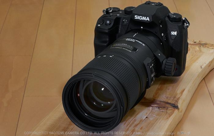 SD1merrill(70_200mm_2,8)2014yaotomi_1.jpg