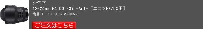 SIGMA,12_24F4Art,2016yaotomi,N.jpg