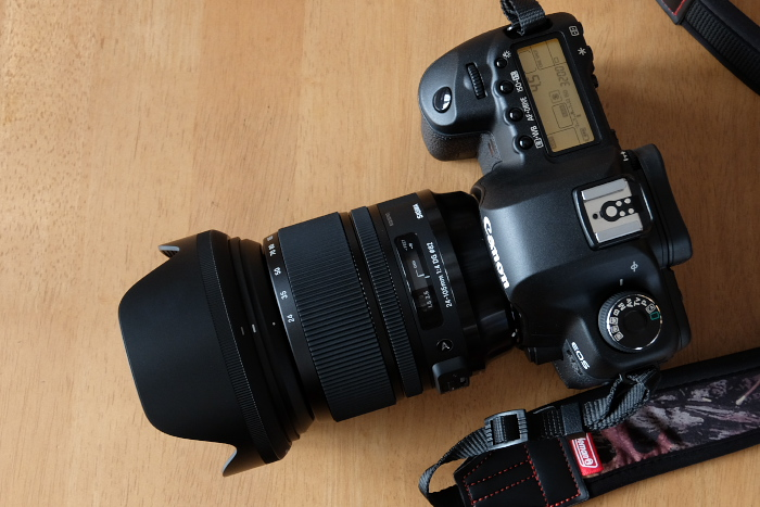 SIGMA,24-105mm,F4(XQ1),2014yaotomi_DSCF0187.jpg