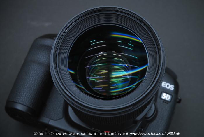 SIGMA,50mm_1,4A_2014yaotomi_3.jpg