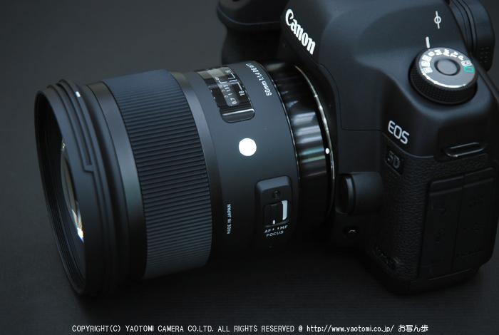 SIGMA,50mm_1,4A_2014yaotomi_6.jpg