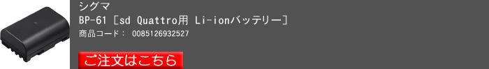 SIGMA-sd-Quattro-H_2016yaotomi(03).jpg