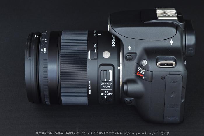 SIGMA18_200mm,kissX7_2014yaotomi_ (2) .jpg
