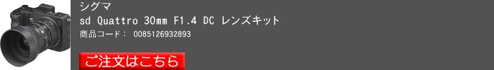 SIGMAsd,Quattro,2016yaotomi_b.jpg