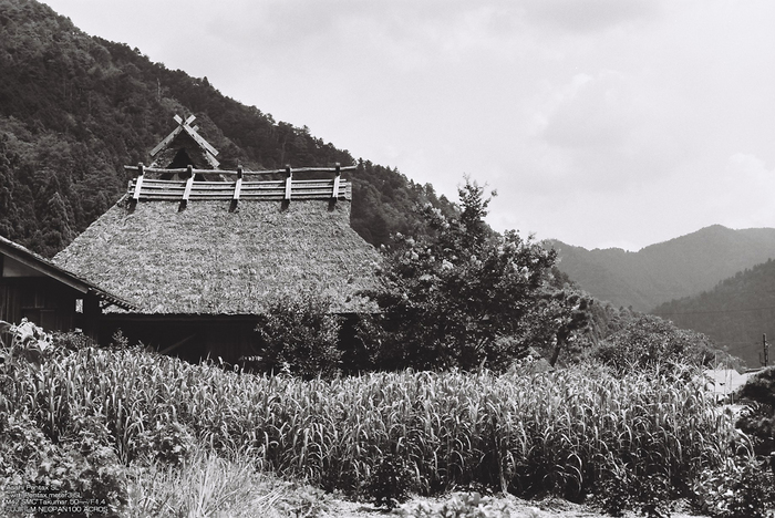 B/W-美山-15.jpg