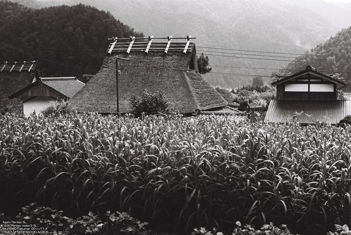 B/W-美山-17.jpg
