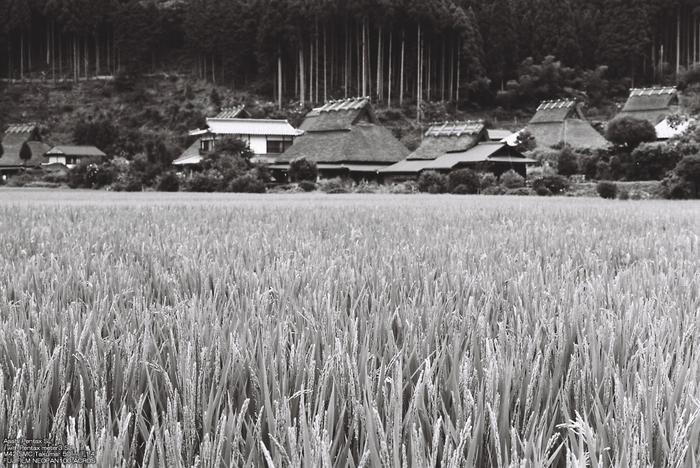 B/W-美山-2.jpg