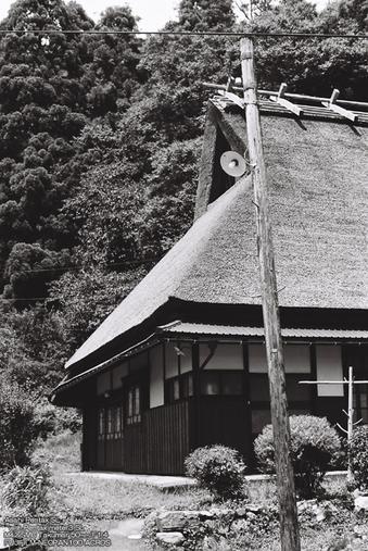 B/W-美山-20.jpg