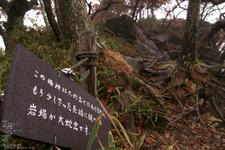 201010_大台ヶ原紅葉_15.jpg