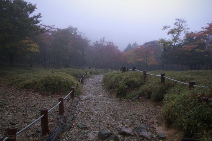 201010_大台ヶ原紅葉_4.jpg