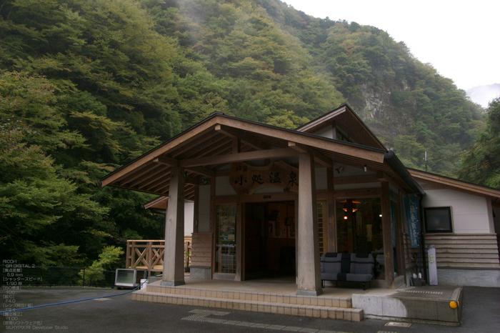 201010_大台ヶ原紅葉_40.jpg