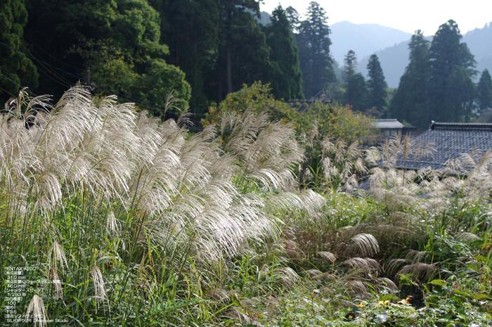 201010_美山_18.jpg