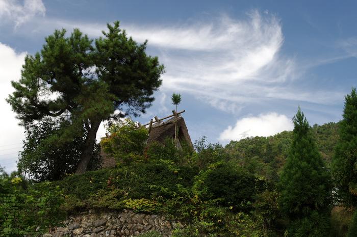201010_美山_36.jpg