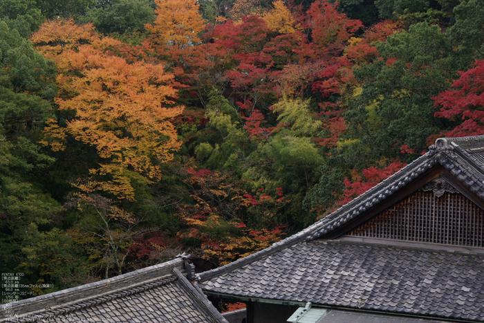 2010_信貴山・紅葉_16.jpg