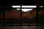 2010_光明院・紅葉_2.jpg