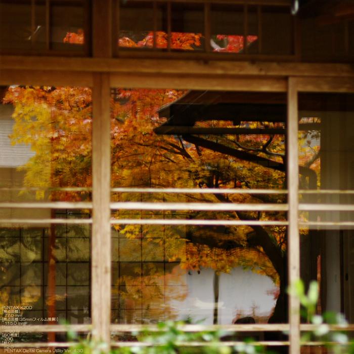 2010_常照皇寺・紅葉_14.jpg