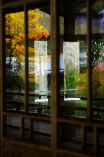 2010_常照皇寺・紅葉_18.jpg