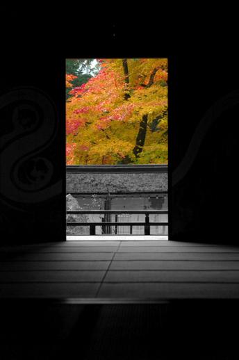 2010_常照皇寺・紅葉_19.jpg