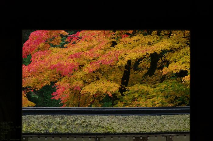 2010_常照皇寺・紅葉_20.jpg
