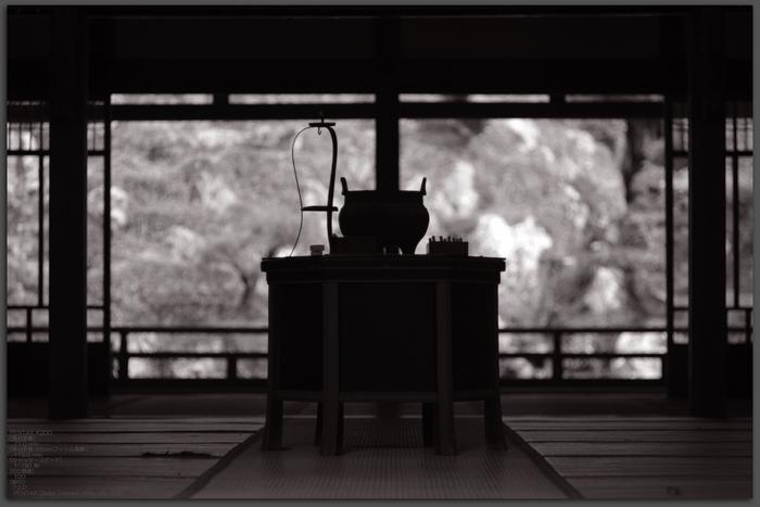 2010_常照皇寺・紅葉_top2.jpg