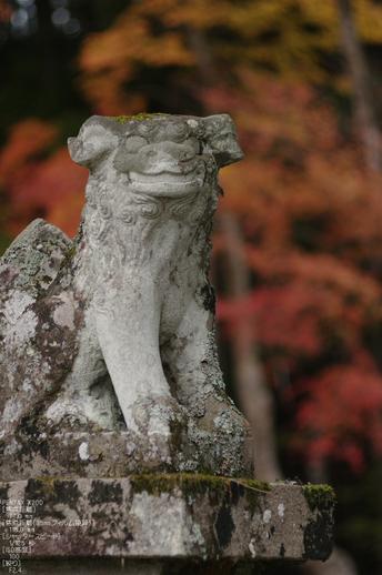 2010_投石の滝・紅葉_9.jpg