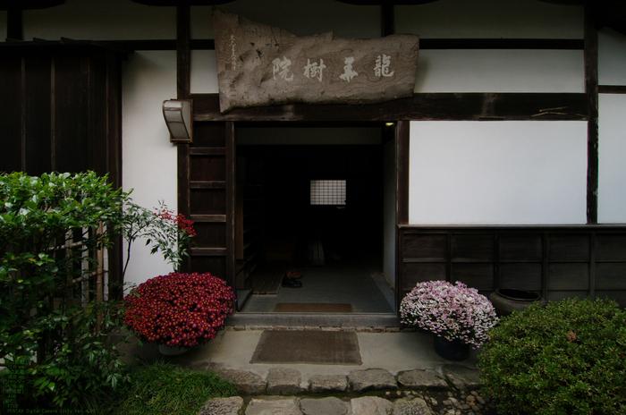 2010_正暦寺・紅葉_8.jpg
